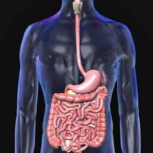 Nguyên nhân gây ung thư: chủ yếu từ nước ăn, nước uống! thumbnail