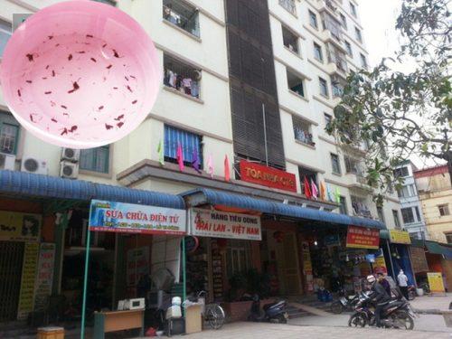 giun đỏ tại KĐT Định Công