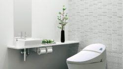 Chọn mua bồn cầu thông minh nhà tắm loại nào tốt
