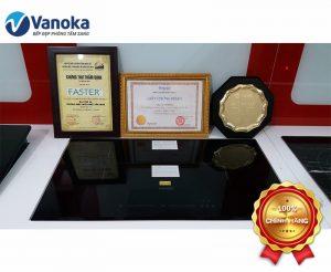 Bếp từ Faster FS - 744M Inverter nhập khẩu Malaysia